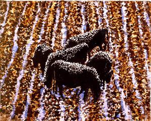 Cows, David Bungay