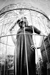 Caged Bird Sings,