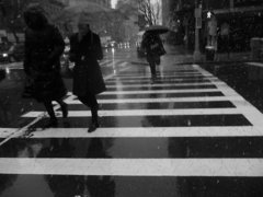 Crossing-in-the-rain