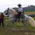 White_horse_cowboy