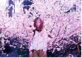 , Luo Yang