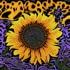 Sunflowers_copy