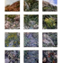 Gail_roberts__stone-stream_multi-panel_lo-res