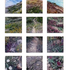 Gail_roberts__stone-trail_multi-panel_lo-res