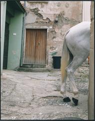 Avant le départ de l\'ardia de San Lussorio. Santulussurgiu (2), Patrick Faigenbaum
