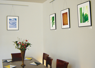 Gecko Gecko exhibition: Crystalline Craters, Ligaments I, Tangram, Ligaments II (L to R), Leila Singleton