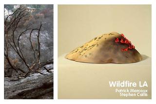 Wildfire LA ,