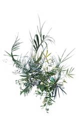 Palms I, Stephen Eichhorn