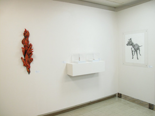 Installation shot, Patrick Marcoux