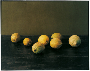 Citrons, Patrick Faigenbaum
