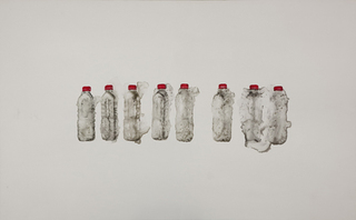 I Never Painted the Same Bottle of Water 8 Times Over,Guo Hongwei