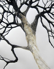 Ashes Tree,Karen Sikie