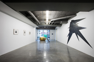 installation view of the exhibition Notorious,