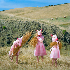 The Harvesters, Serie Between Worlds, Polixeni Papapetrou