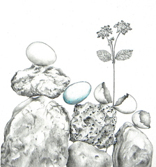 Balancing Act, Karen Frimkess Wolff