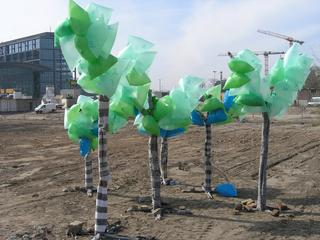 Ich wusste gar nicht, dass hier Bäume wachsen., Katrin Stender