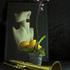 Purple_orcxhid___trumpet_dsc_0502_2_3_copy