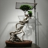 Shen_shaomin_bonsai-44