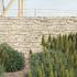 Afriges-20080710