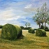 0215_piles_of_hay_in_ireland