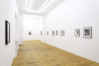 Installation view, Bonnie Camplin