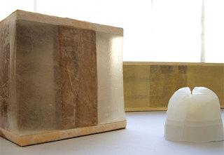 Untitled (installation view), Chelsea Pegram