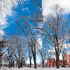 Sun_after_snow