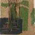 Hayekswampgrass