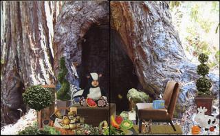 Tree House, Elizabeth Cayne