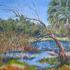 Florida_wetland