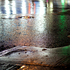 Puddle_4671