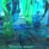 4_aquarium_detail-300dpi