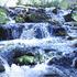 O_sierra-creek