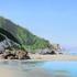 T_pacific-coast