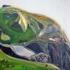Green_ledge_mountain