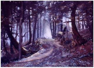 Hemlocks, Arden Forest, New York, Frank Mason