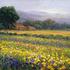 Earthbound_farms_24x30
