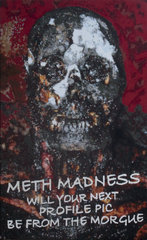 Meth Madness,Donald Rizzo