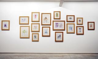 "Installation view ""Representations of the natural world"", David Godbold"