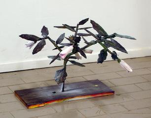 Datura, Mats Adelman