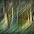 Locustgrove1
