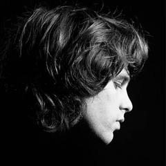 Jim Morrison, Joel Brodsky