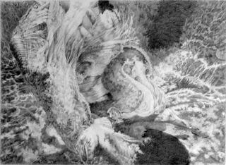 Pulchritudinous Vortex, Therese Conte