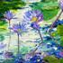 African_hyacinths_book