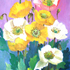 As_croppedyellow_and_white_poppies