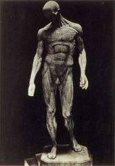 L\'Ecroche, Gypsum, 1901-02, Constantin Brancusi