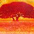 Nick_agid_big_tree