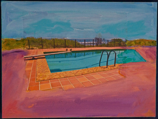 Journey From the Pool to the Beach, Robin Becker