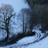 Snow_track_2