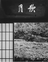 "Untitled (from the series ""Katsura""), 1953—54, Ishimoto Yasuhiro"